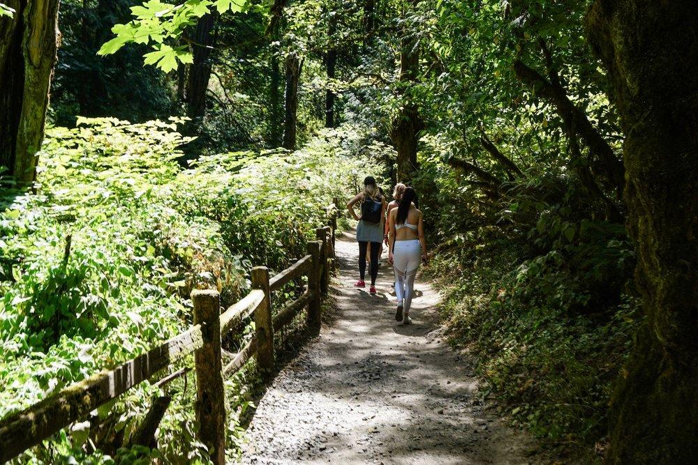 Walking in Forest Park, Portland Oregon
