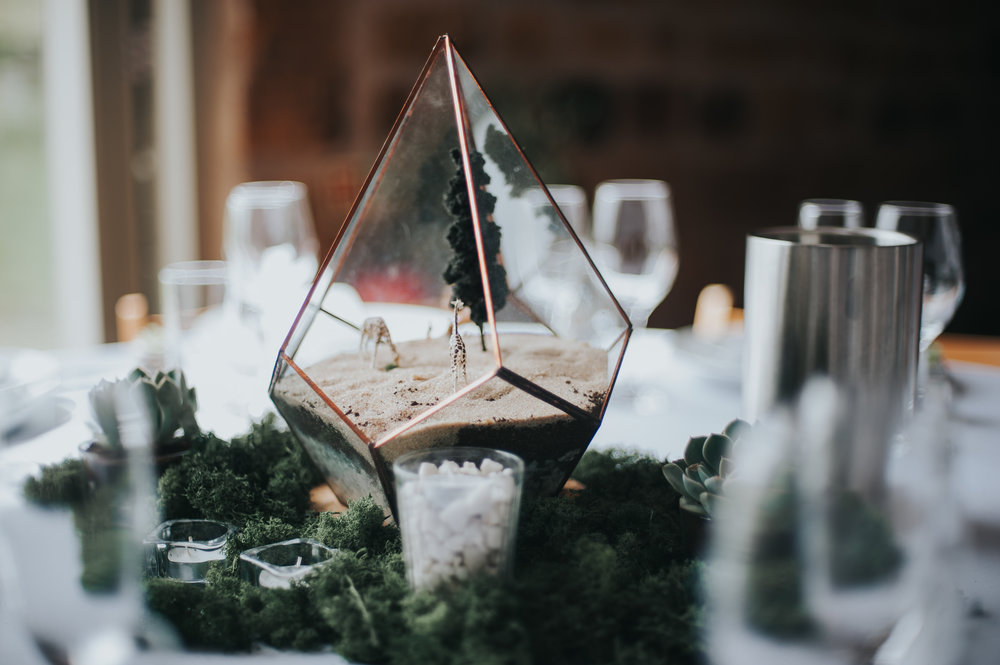air plant terrarium table settings