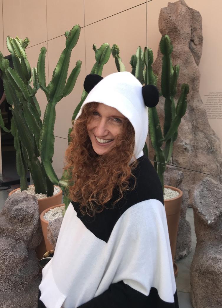 Panda in Sao Paulo