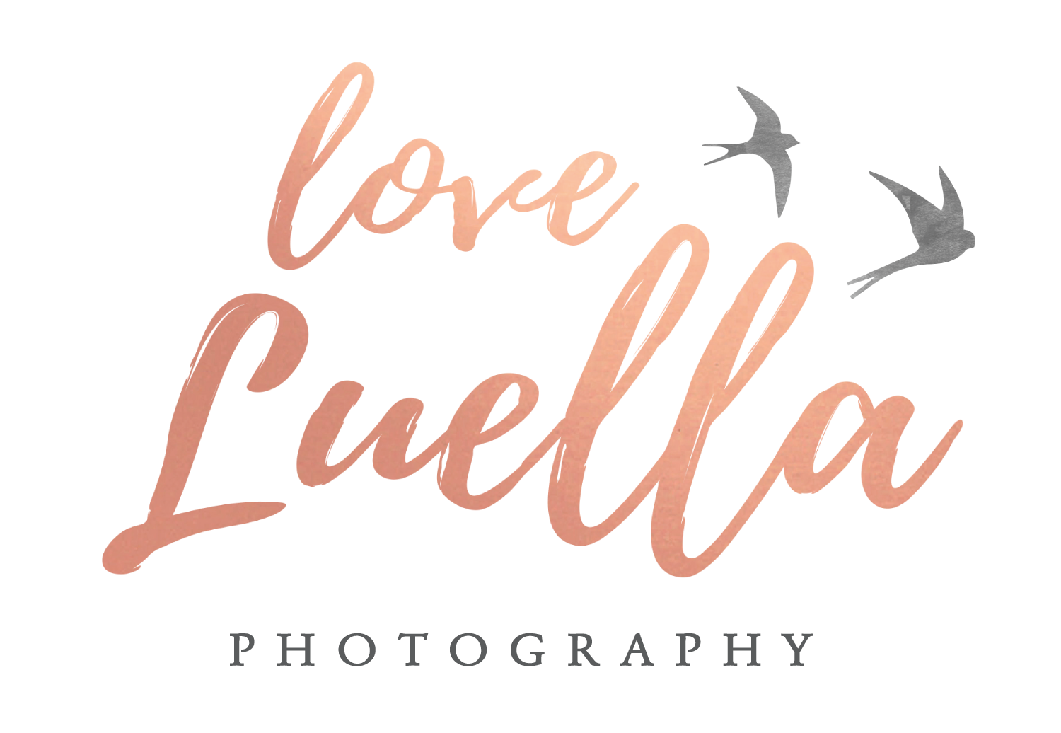 Love Luella Photography: North Wales and Chester Wedding Photographer