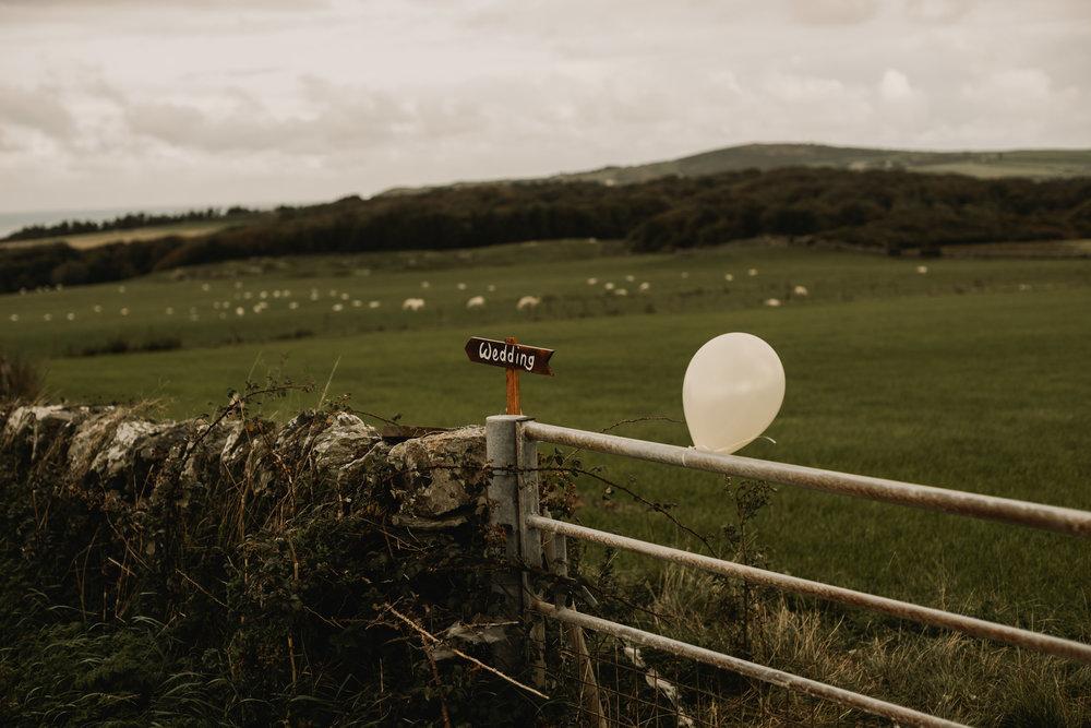 Anglesey Wedding Photography - Carreglwyd Estate-2087.jpg
