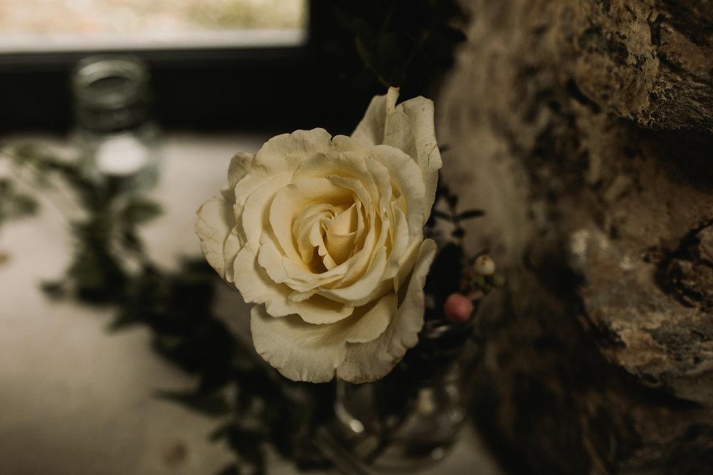 Anglesey Wedding Photography - Carreglwyd Estate-5836.jpg