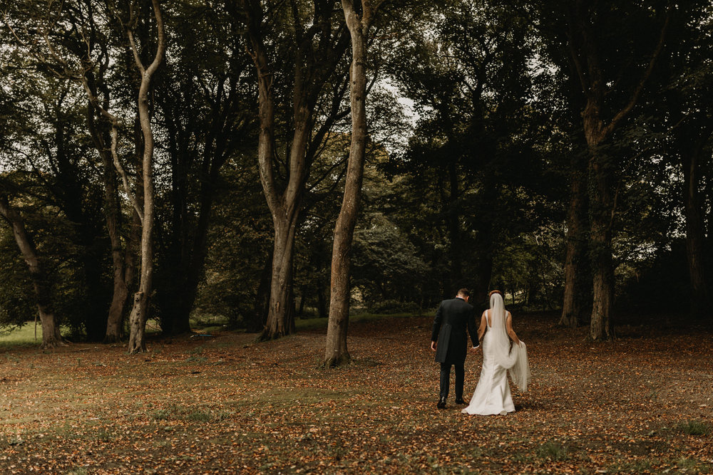 Anglesey Wedding Photography - Carreglwyd Estate-6852.jpg