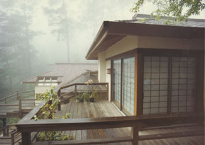 Japanese Exterior 2