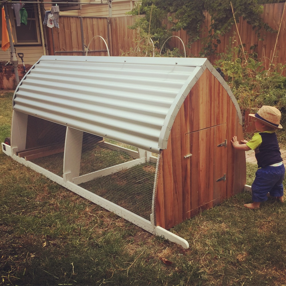 The coop is 1x2.4m, and made from mostly repurposed materials