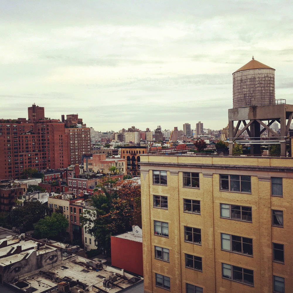 Birds Eye View of the West Village (NYC), photograph, 2016