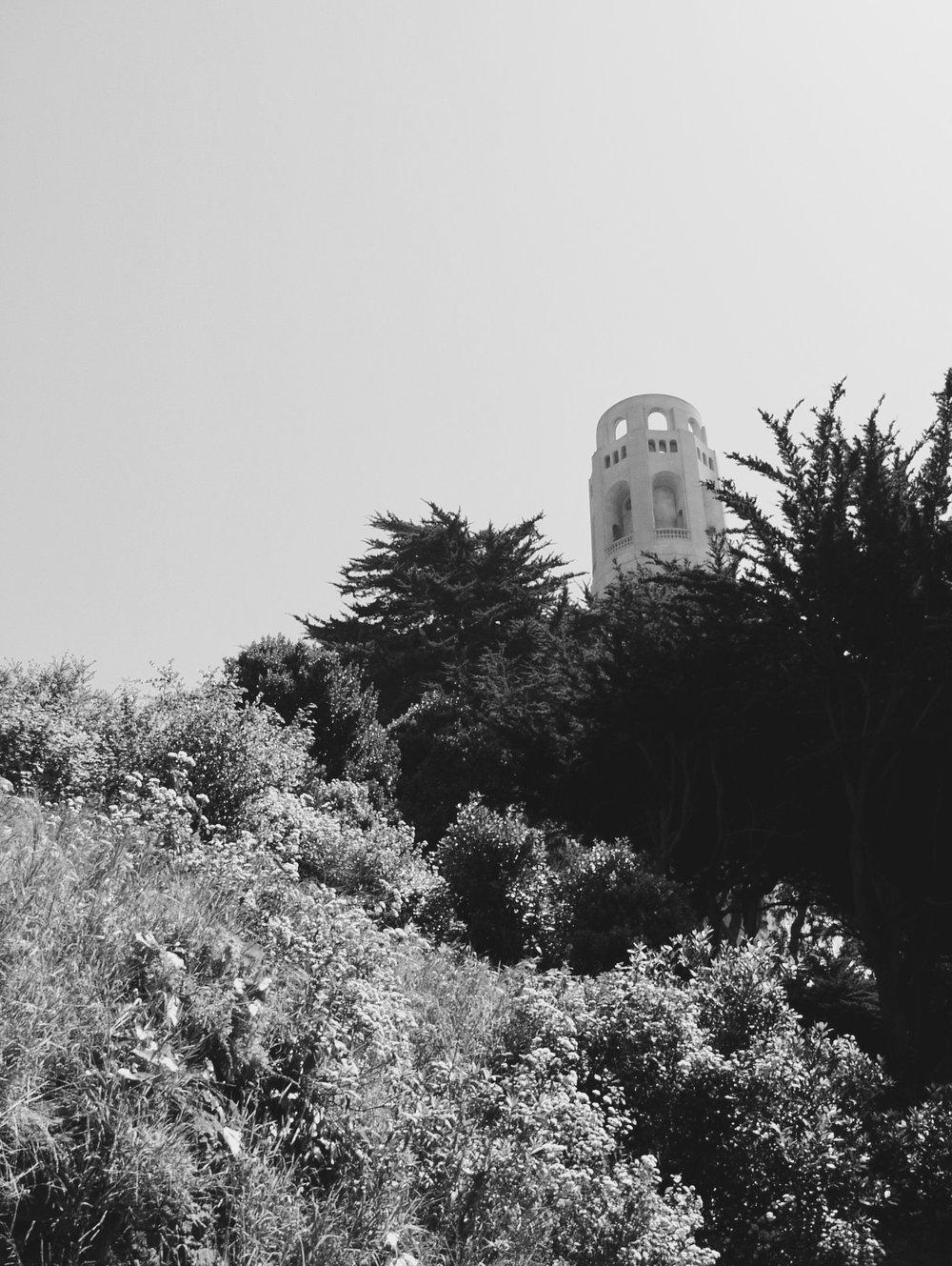 San Francisco - 5.jpg
