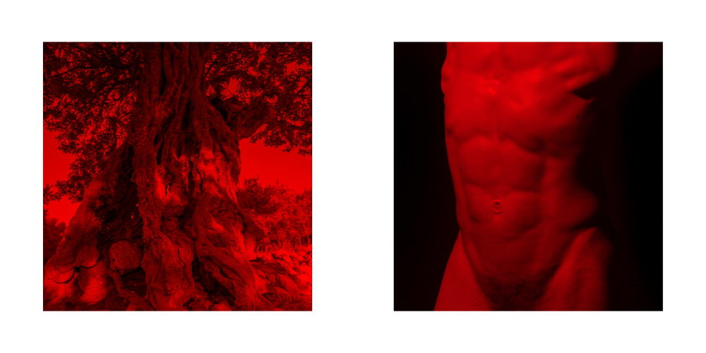 IAKOVOS RED 2-3.jpg