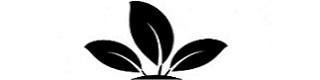 folhas-da-planta-em-uma-mao_318-41682.png