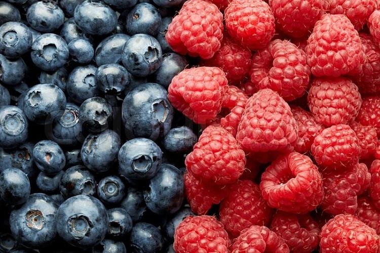 4476159-blueberries-and-raspberries.jpg
