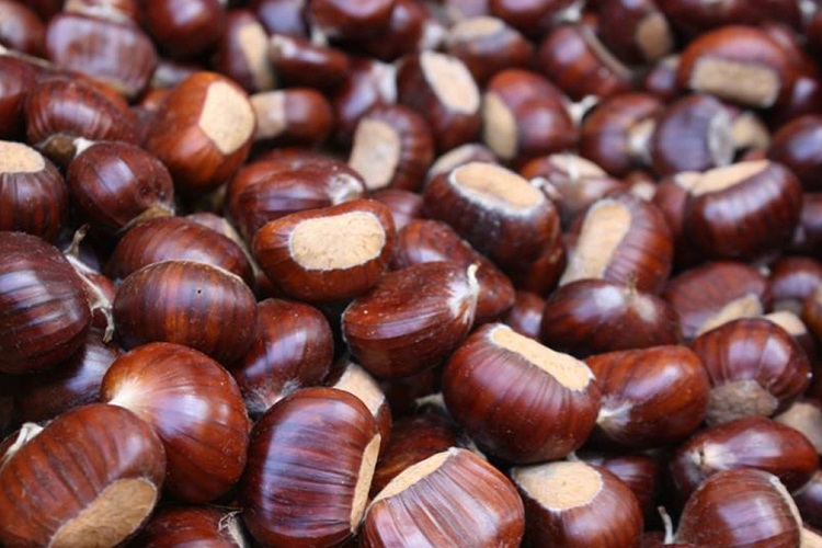10_26_Features_Chestnuts.jpg