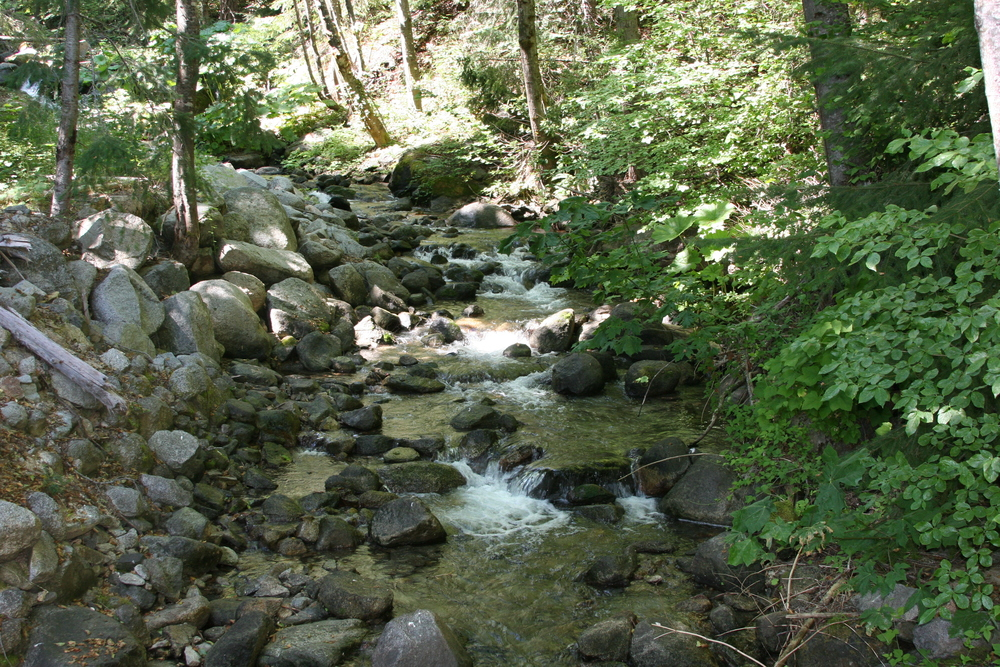Little Boulder Creek in Summer