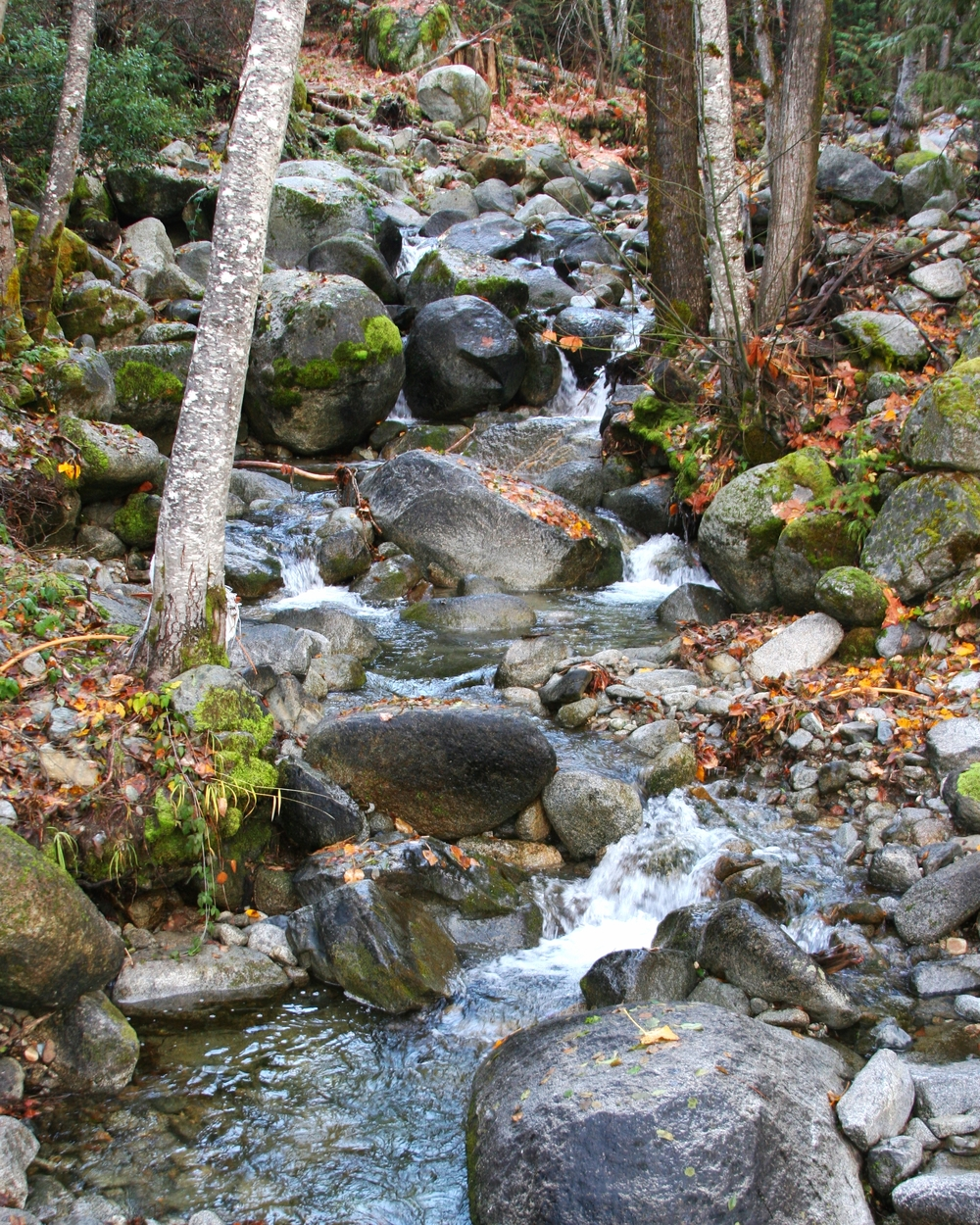 Little Boulder Creek in Fall