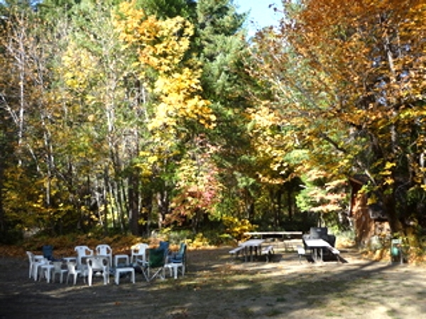 Recreation Area Barbecues and Fire Pit