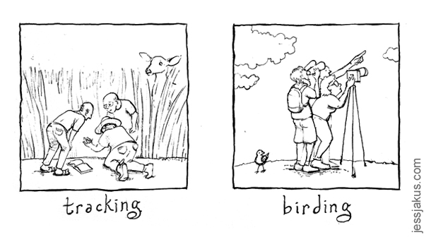 tracking birding.jpg