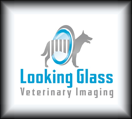 Looking Glass Veterinary Imaging