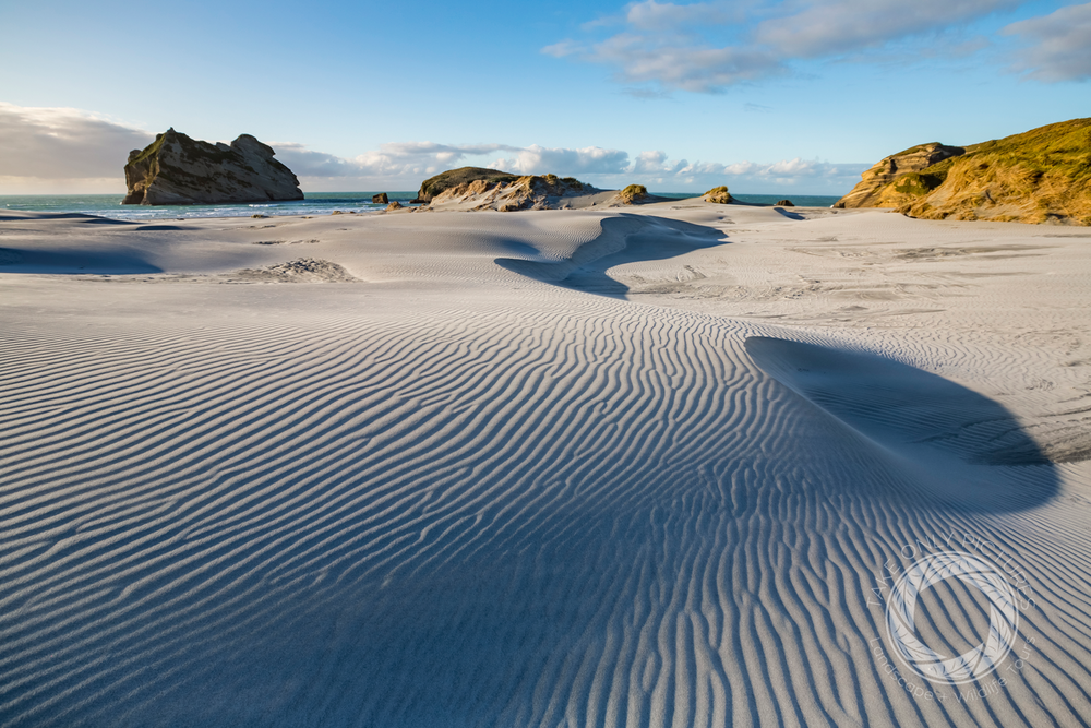 Sand patterns enhanced in late afternoon light - One Day Tour to Golden Bay