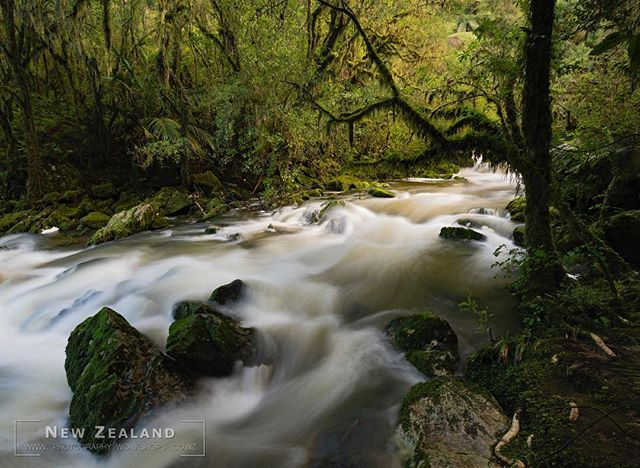 The Riwaka Resurgence... hard to resist a long exposure shot in this place...