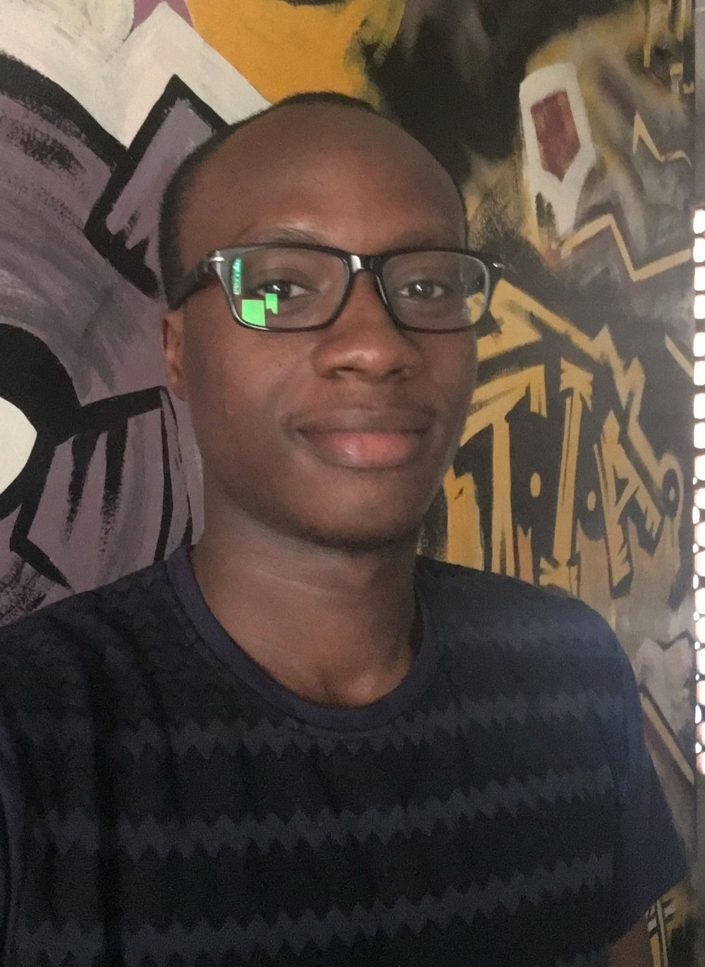 Seyi Adekoya, Lead Developer