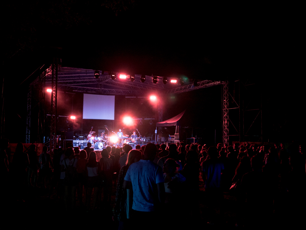 Musical Zoo festival in Brescia, Italy  22.07.16