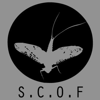 SCOF.jpg