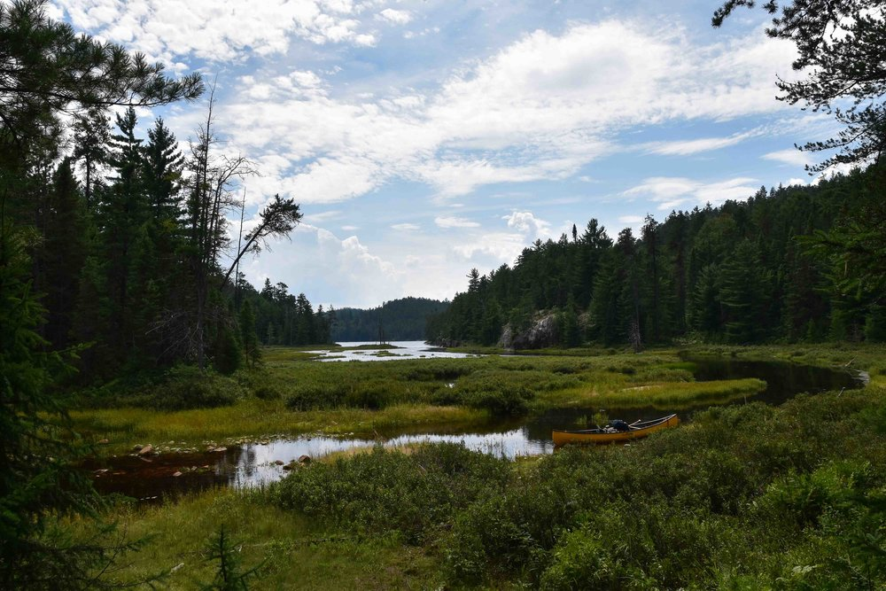 Temagami Wilderness