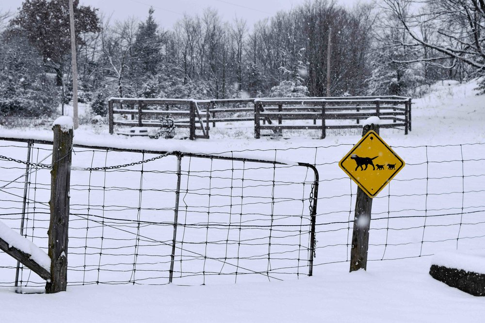 OnPoint Kennels, Ontario