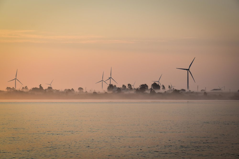 Morning Fog, Wolfe Island