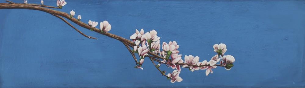 Magnolia Branch.