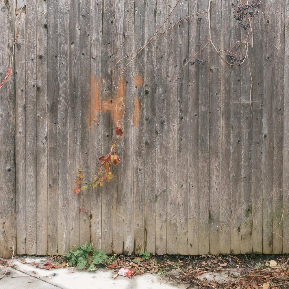 brattleboro web - 013.jpg