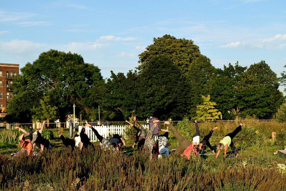 gardenstretch.jpg