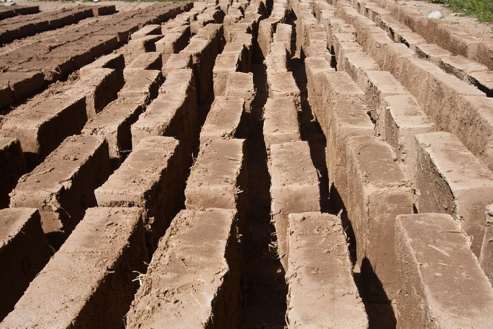 Volunteer adobe bricks curing in the sun.