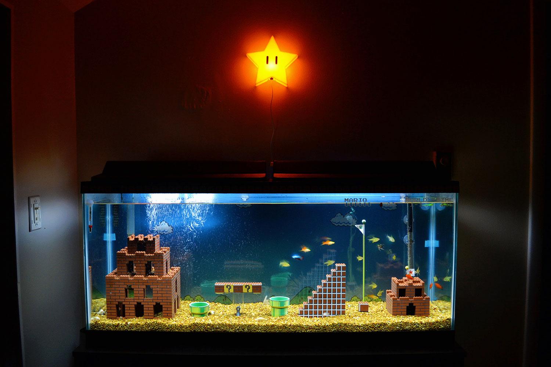 Mario Brothers Aquarium Decorations A Year Later Super Mario Brothers Aquarium Wired Life