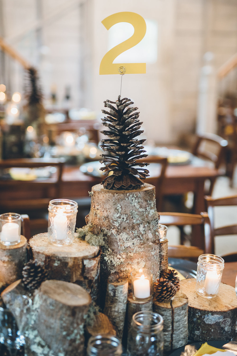 Mason jar candles and wood log centerpieces.Pinecone table numbers. Mountain and forest DIY wedding.