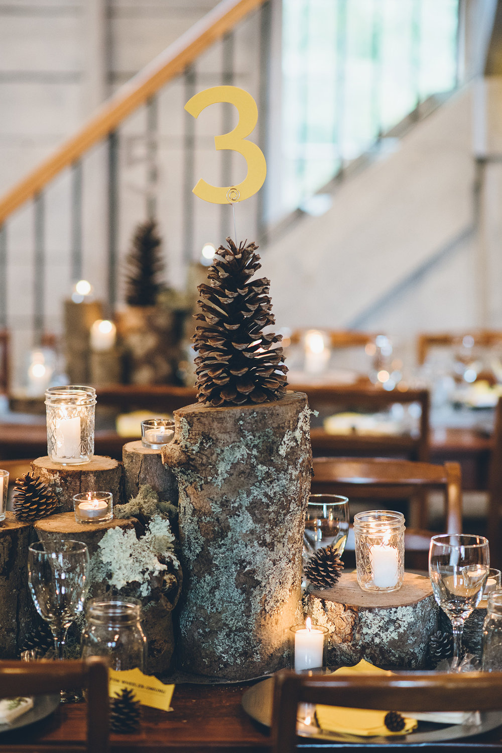 Pinecone table numbers. Mountain and forest DIY wedding.