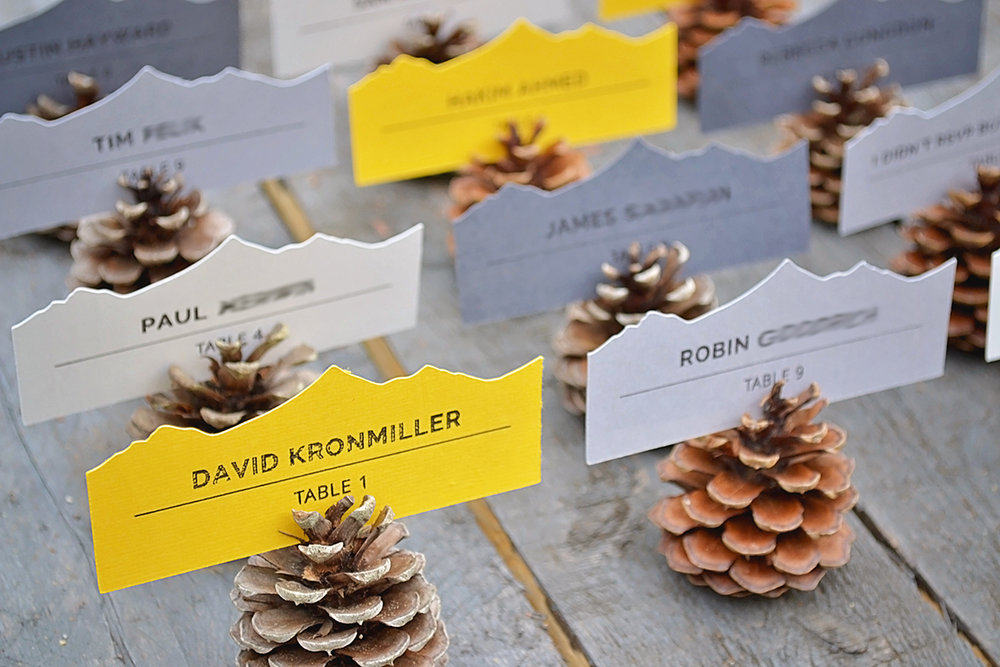 Pinecone place cards. Pinecone escort cards. Mountain and forest DIY wedding.