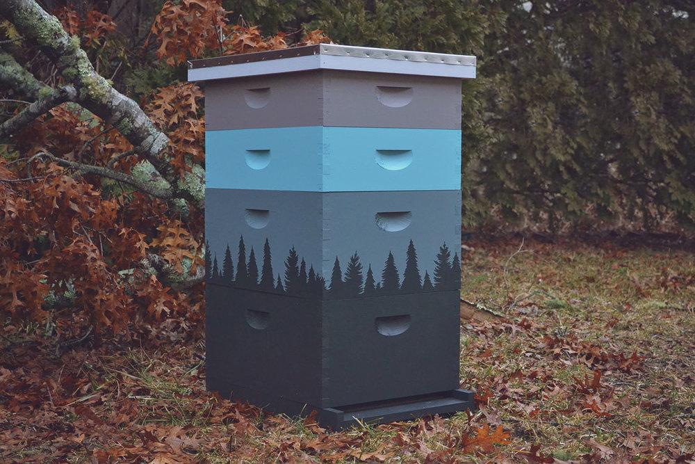 Hive_6.jpg