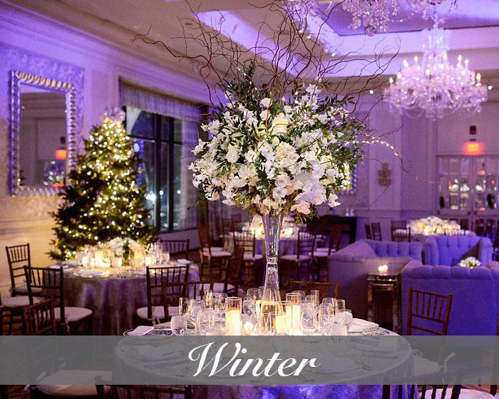 WinterSeasonImage.jpg