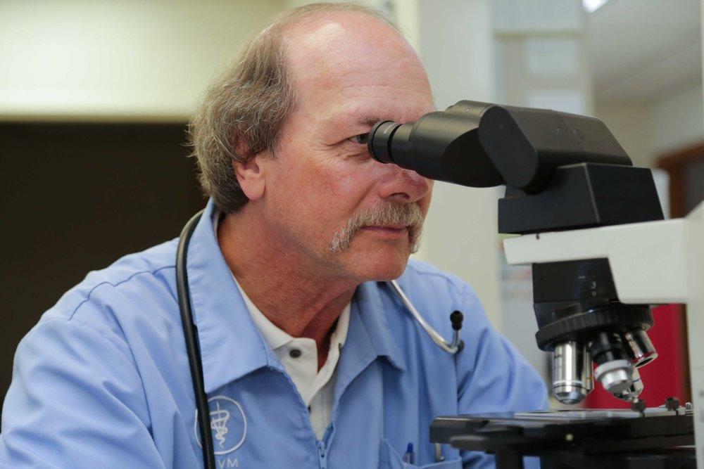 Dr. Stuart Hicks, DVM
