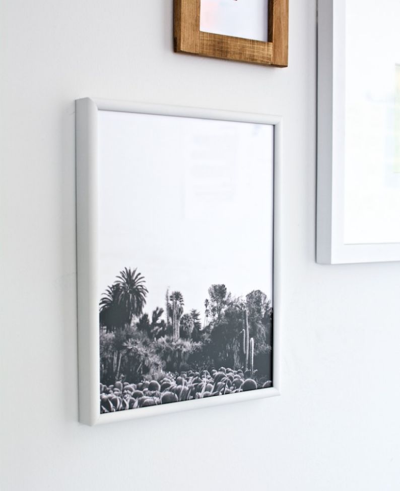 Black and white cactus print: Sycamorestreetpress