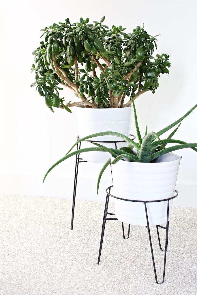with IKEA planters