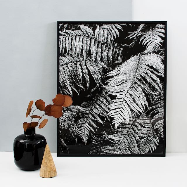 Fern print 16x20 inches