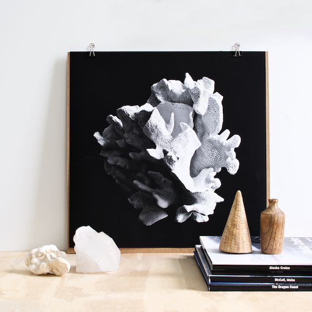 Black and white coral art print