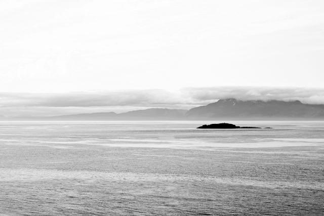 Pacific Ocean new spicies