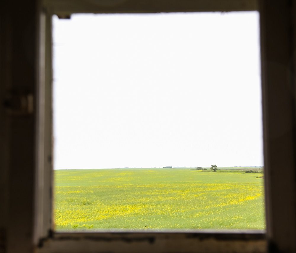 Another room with a view of the surrounding mustard fields