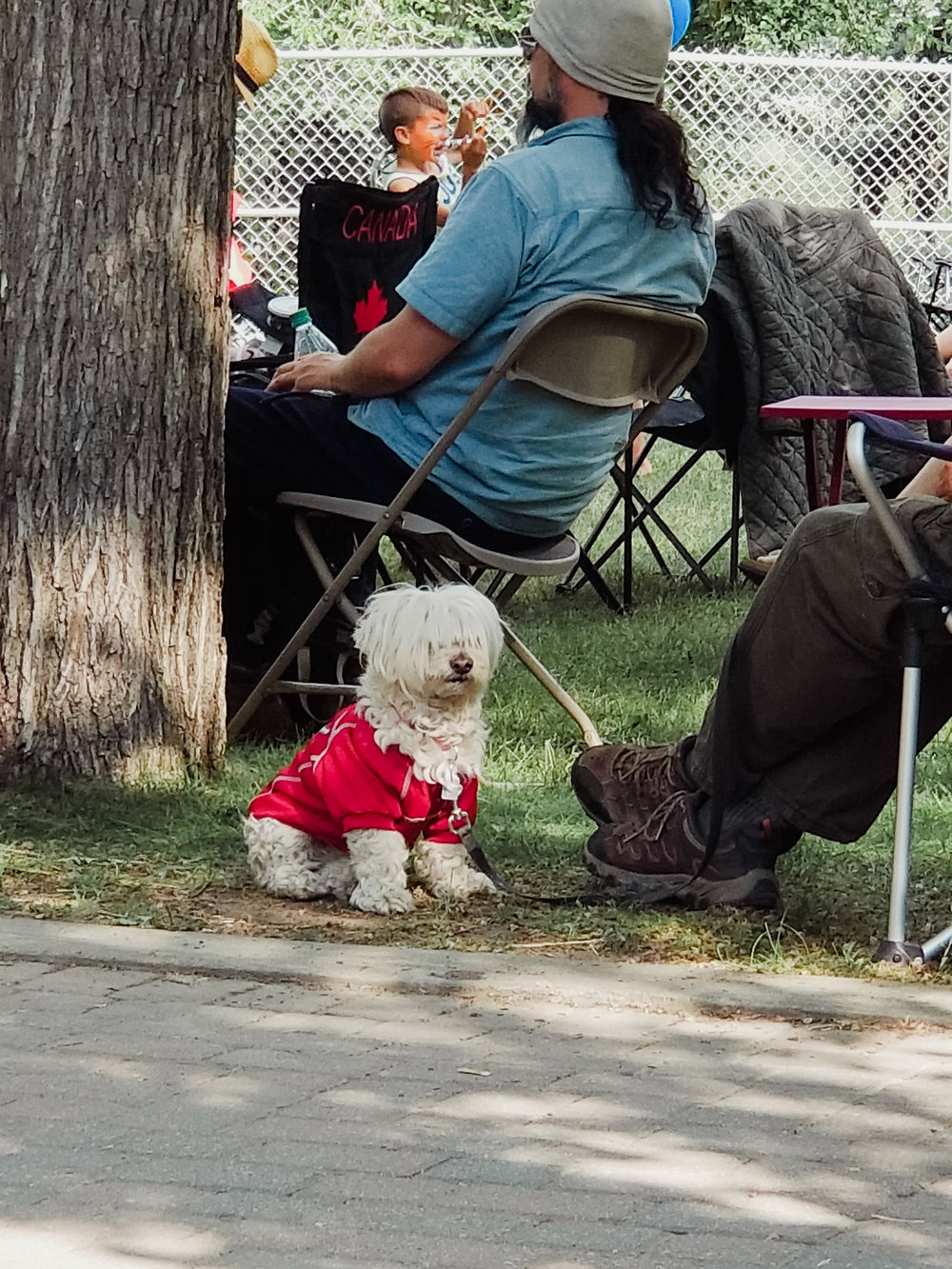 Jazz Fest dog -   On a side note, bangs can be such a commitment .