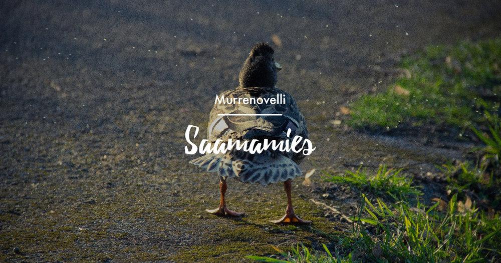 Lue Essi Pulkkisen humoristinen murrenovelli Saamamies.