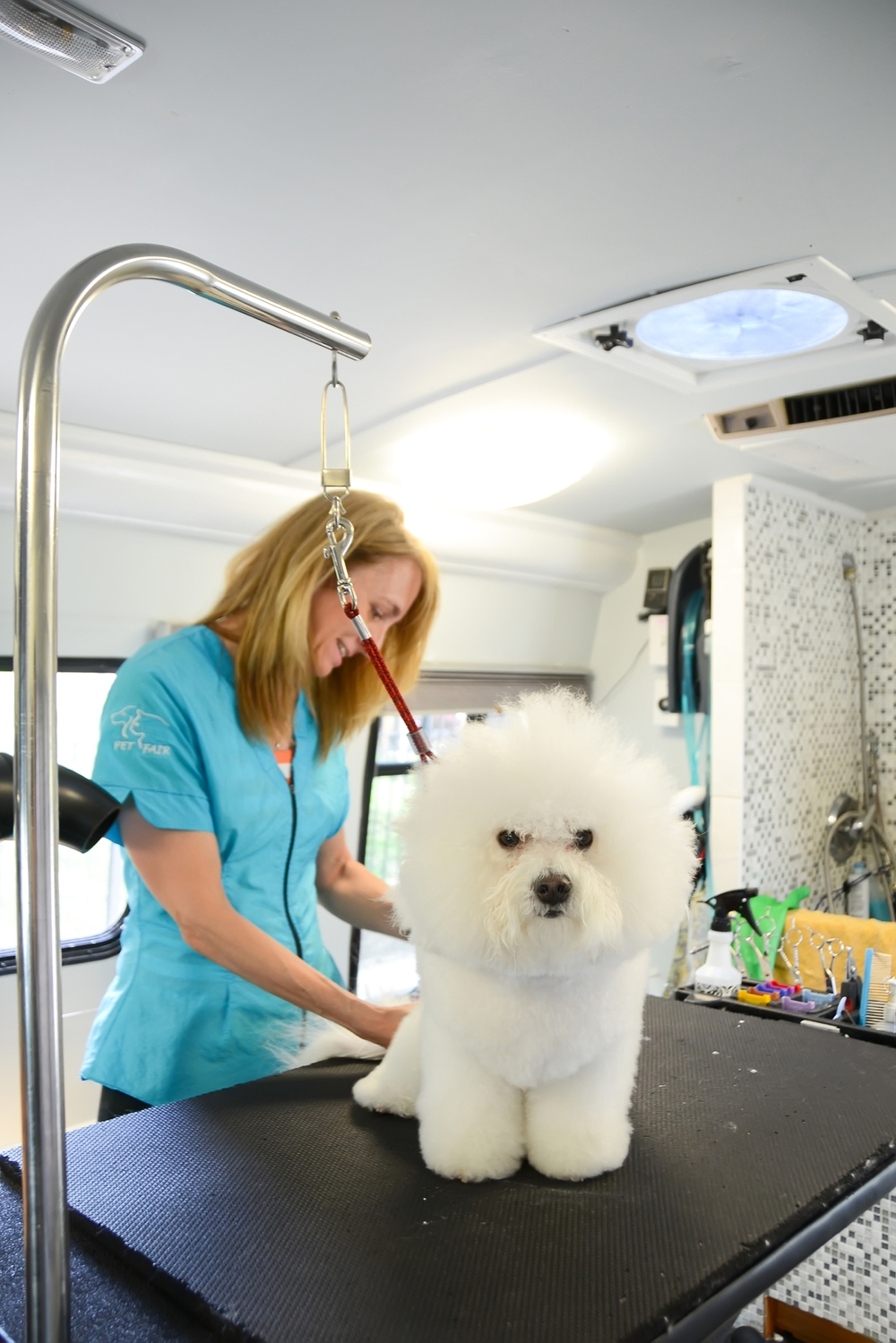 Columbia, MO pet grooming and boarding that comes to you! | The Pet Fair Mobile Spa