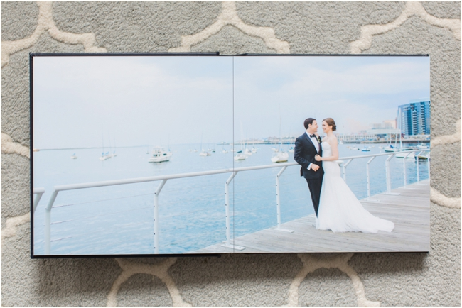 Boston Aquarium Wedding Album photographed by Deborah Zoe Photography.