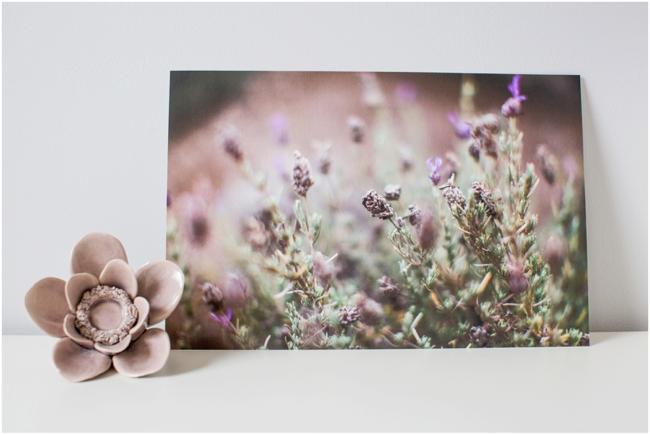 Fine Art Print of lavender fields in Maui by Deborah Zoe Photography.